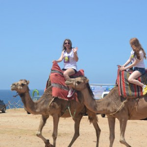 summer camps for teens tarifa, teenagers on a camel ride