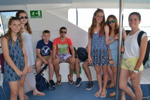 summer camps for teens in spain, whale and dolphin watching