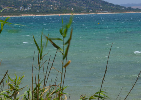 Immersion-summerprogram-for-teenagers, Dunes Tarifa