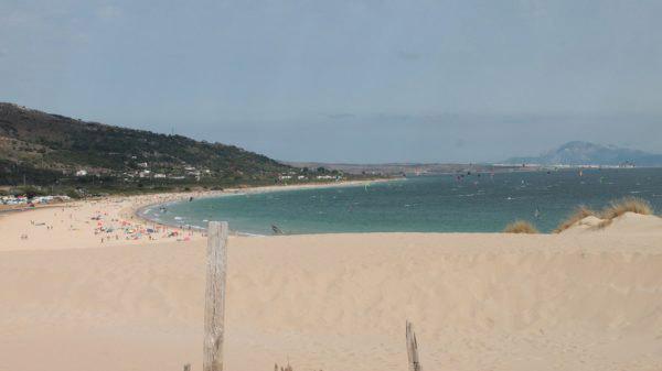 Campamento-de-verano-Lenguaventura, apoya la campaña de proteger el oceano