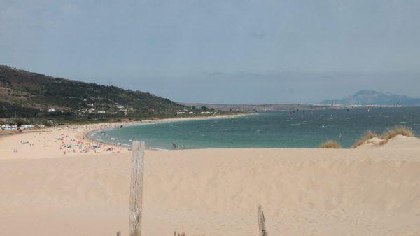 campamento de verano lenguaventura, proteger el océano