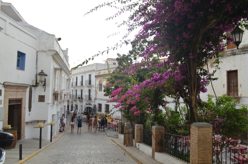 Tarifa, campi estivi, destinazione Spagna