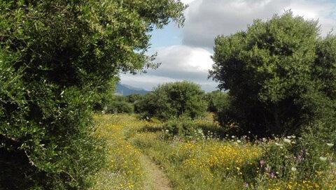 creative-outdoor-activities-1, pure nature